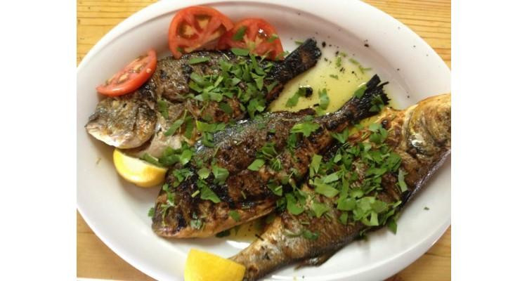 Agkyrovoli-fishes