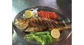 Faros-fish