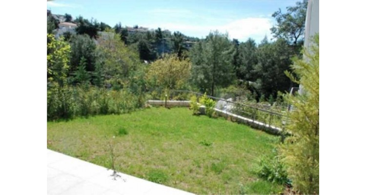 home-for-sale-panorama