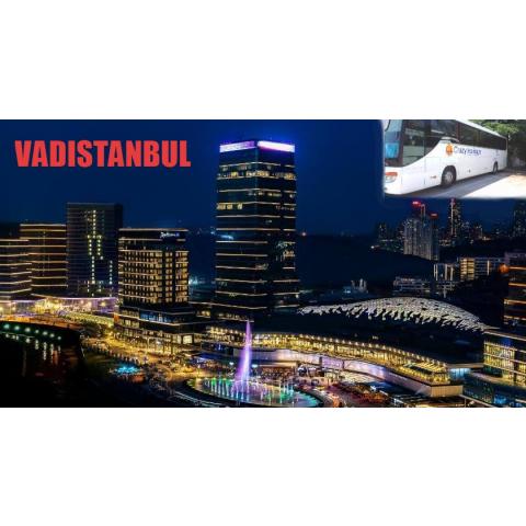 Vadistanbul-Crazy Holidays