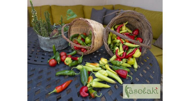 Fasolaki-accommodation-Skopelos-vegetables