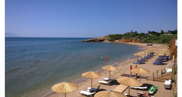 alexander-beach-otel