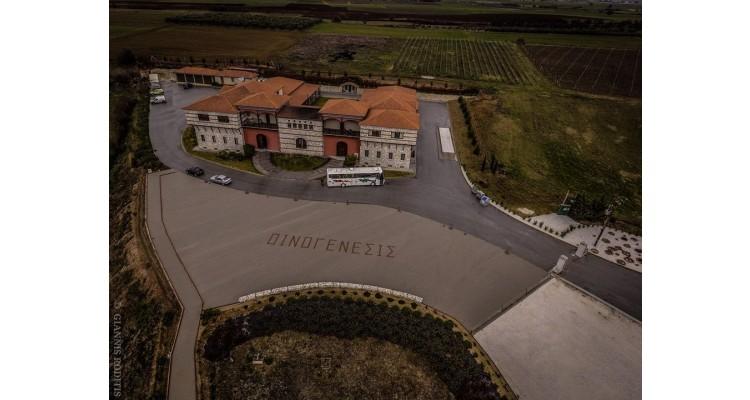 Oinogenesis-winery