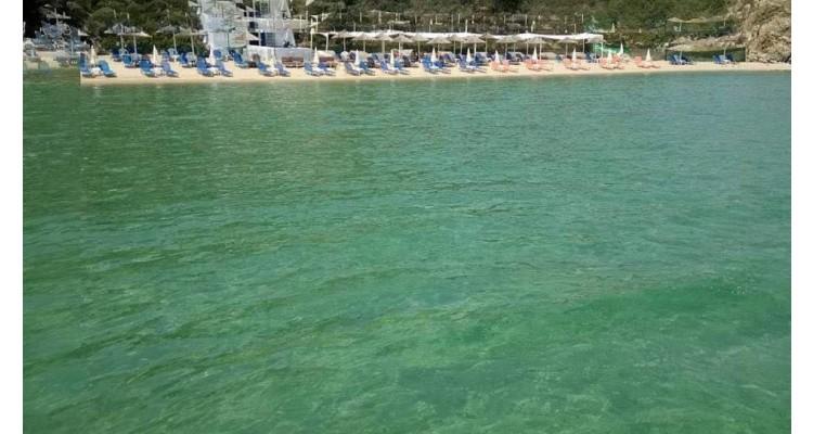 turkuaz suları