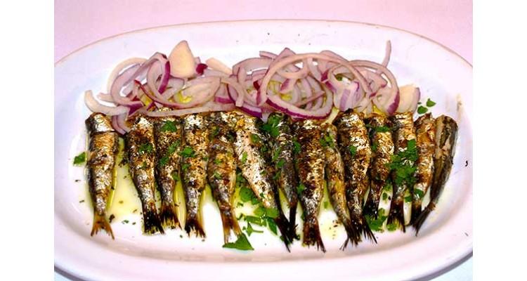 Maestros-sardines