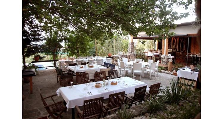 Τριζόνι-Εστιατόριο