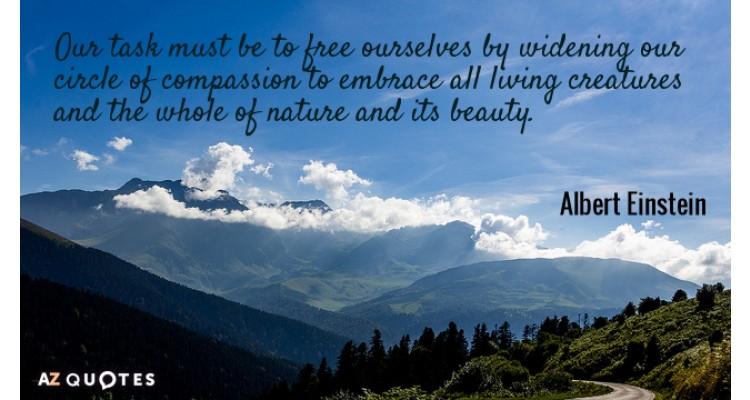 Albert Einstein-quote