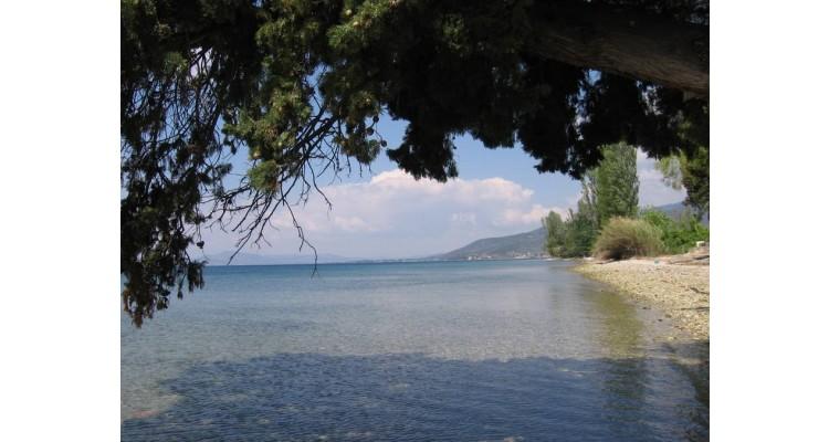 Pelio-beach