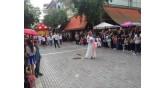 Anthestiria-parade