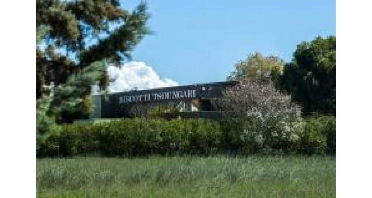 biscotti-factory