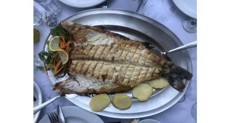 Panos-restaurant-Sithonia-fresh fishes