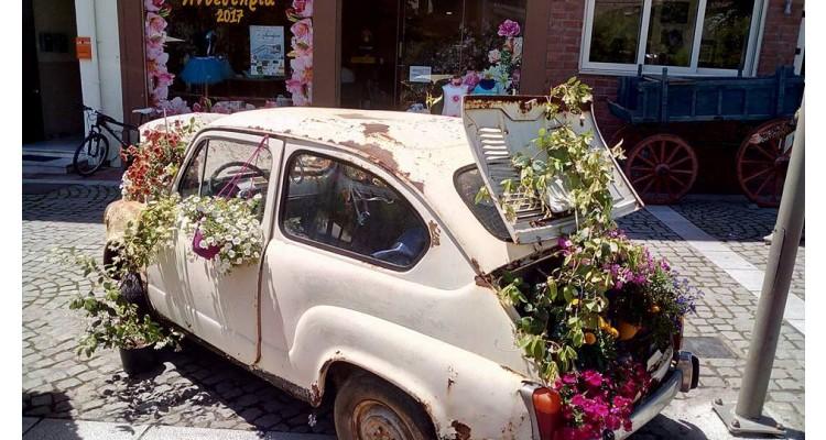 car-flowers