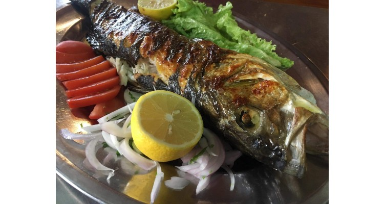 Faros-taverna-fresh fish