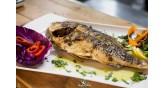 Arodo-balıklar