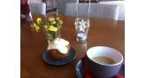 Αστέρας-καφετέρια