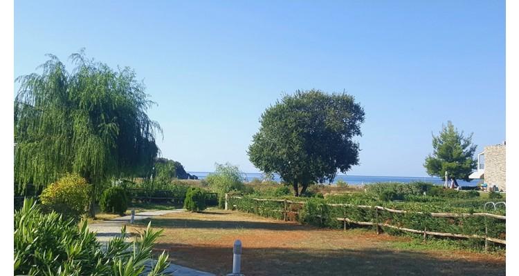 Azapiko-villa-garden