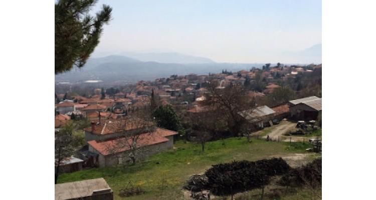 Panagitsa-Pella